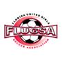 FLUGSA-copy