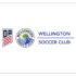 Doral Wellington Soccer Club